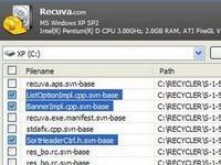 Recuva File Recovery v1.41 (magyar)